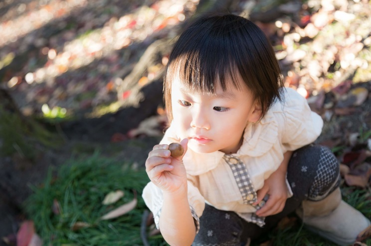 Z会の評判が分かれる理由?幼児期に学ばせたいのは親子一緒の学び体験!