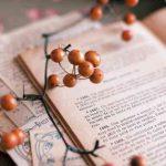 モンテッソーリ幼児教育とは?「個」を大事にする伝統的教育法